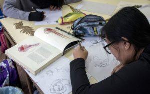 La ilustración científica protagoniza una jornada en el IES Barrio Simancas